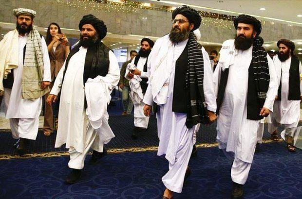 چرا درخت دموکراسی در افغانستان هرگز رشد نمی کند؟