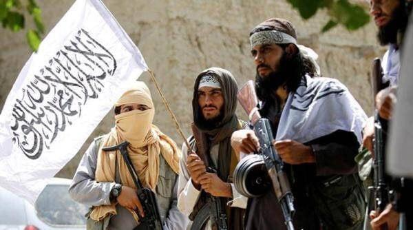 """امنیت ملی: اعضای شبکه القاعده در صفوف طالبان فعال هستند."""""""